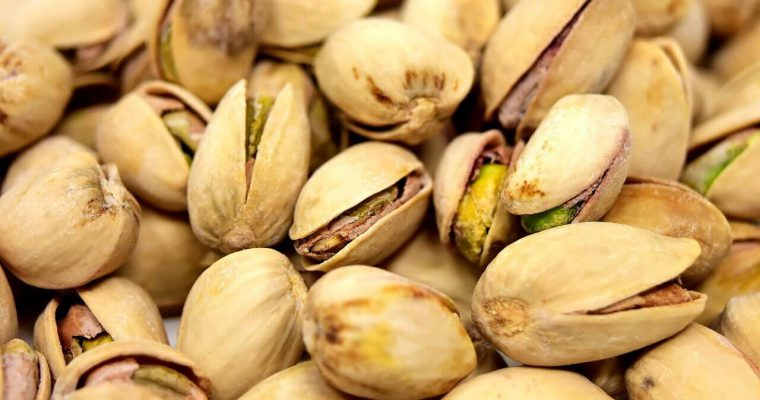 Jak rosną pistacje – gdzie rośnie drzewo pistacjowe