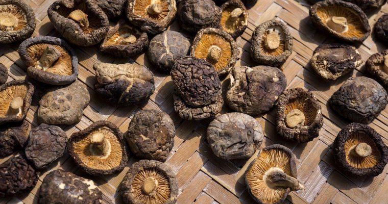 Jak przechowywać suszone grzyby