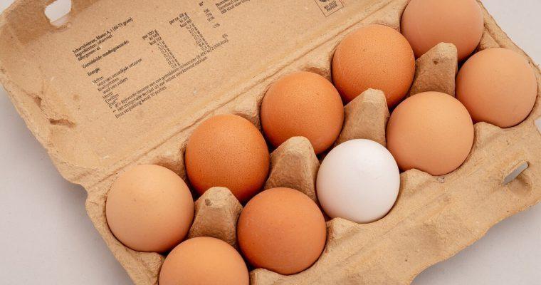 Co zrobić z żółtek jaj?