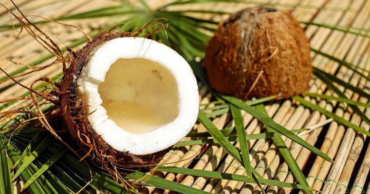 Gdzie rosną kokosy? Uprawa palm kokosowych
