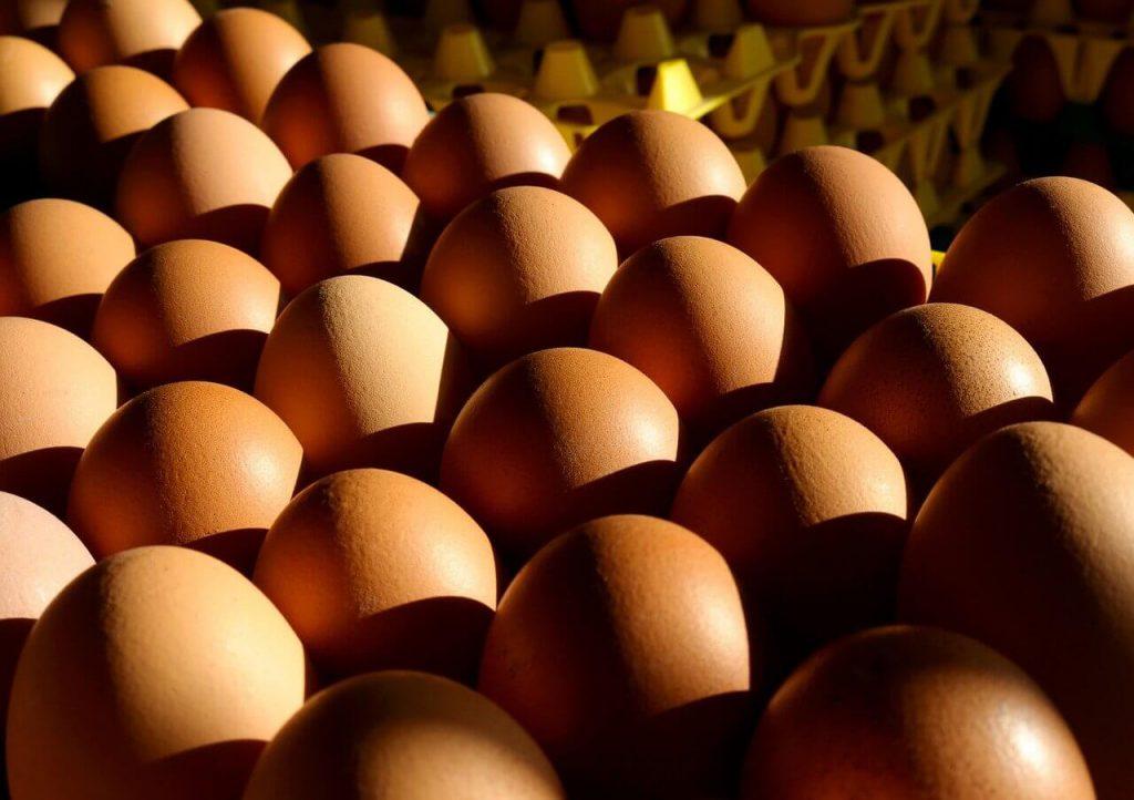 jak wykorzystać białka jaj