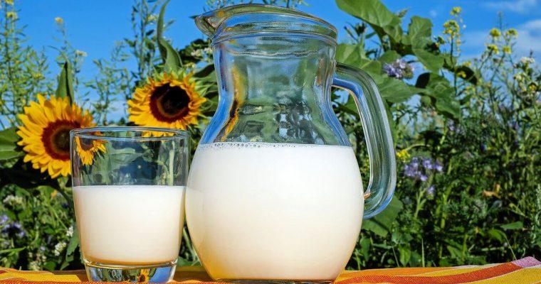 Jak zrobić mleko ryżowe – przepis
