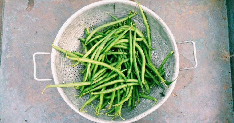 Jak ugotować fasolkę szparagową?