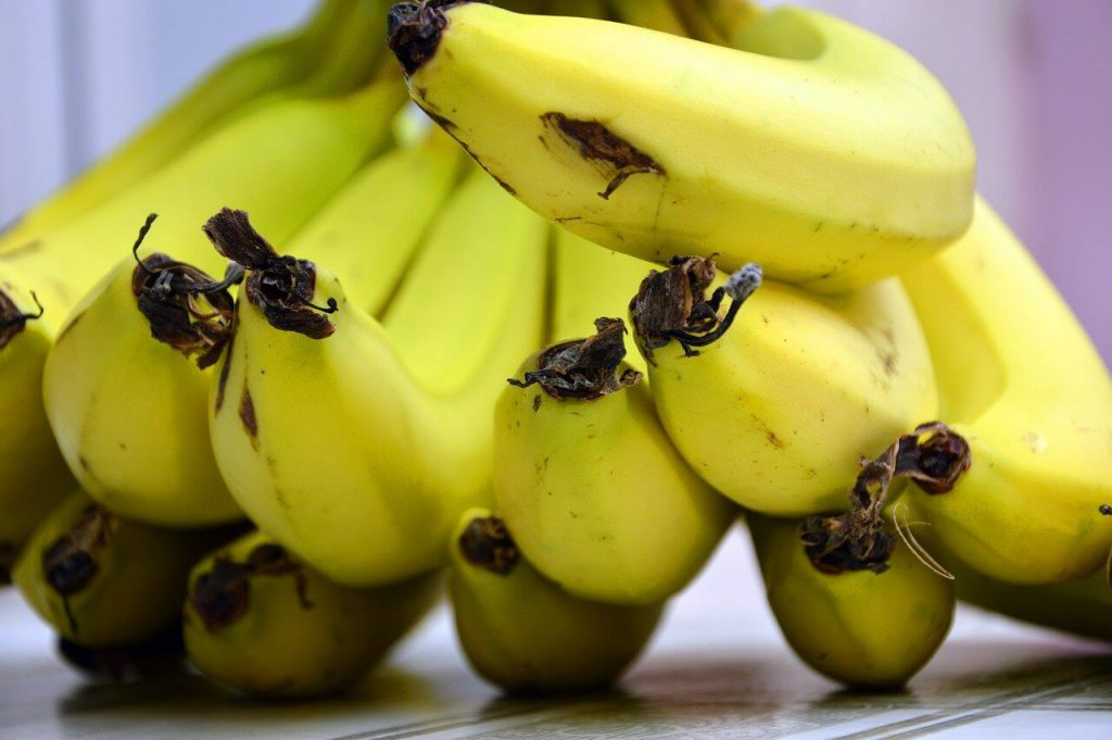 jak dojrzewają banany