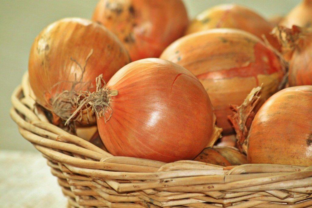 przechowywanie cebuli