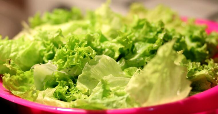 Jak przechowywać sałatę? Najlepsze sposoby na przechowywanie sałaty